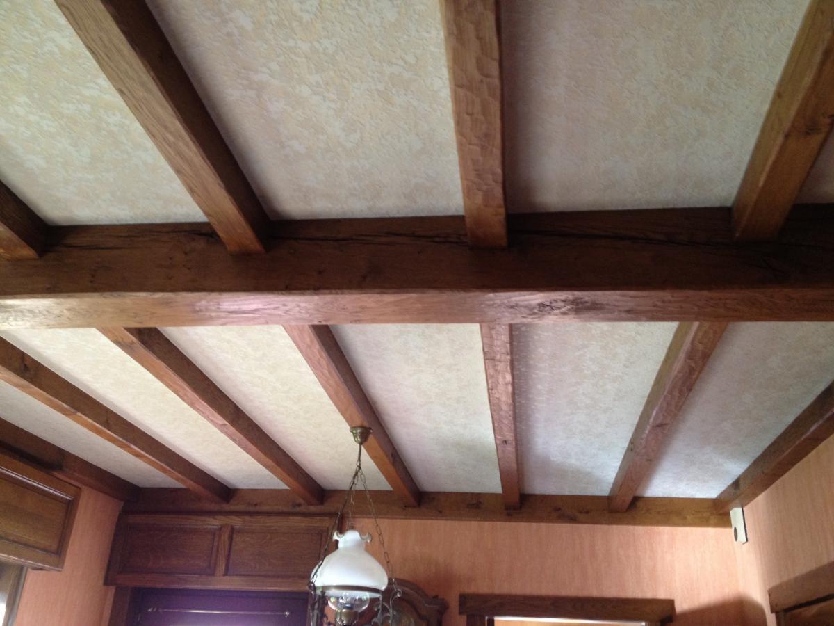 R nover ses plafonds soi m me meubelrenovatie - Renover soi meme ...